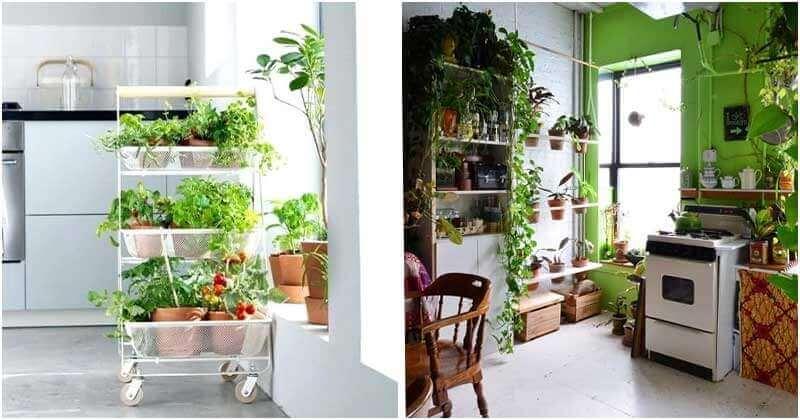 20 Brilliant DIY Indoor Kitchen Herb Garden Ideas