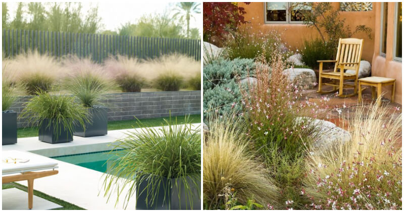 29 Shimmering Landscaping Gardens With Ornamental Grass